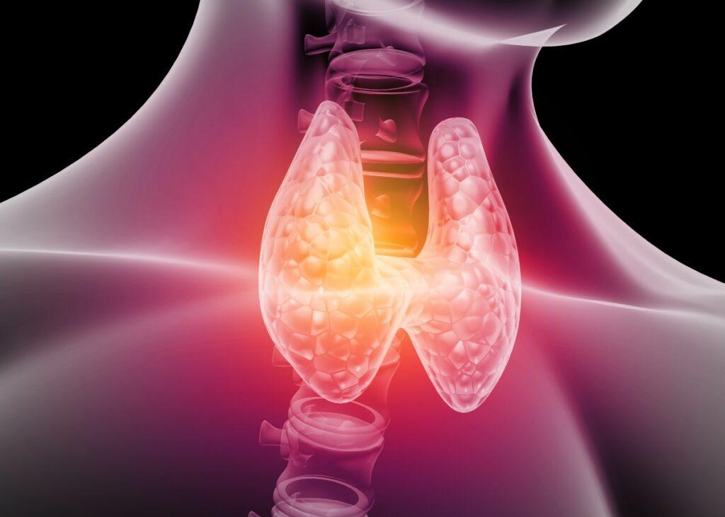 Bonus tiroide. Di cosa si tratta in realtà (Foto di Explode per Shutterstock)