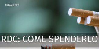 Reddito di cittadinanza come spenderlo? Ecco cosa si può e non si può comprare