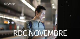 Reddito di cittadinanza novembre 2020: pagamento giorno 27. Esclusi e tagli