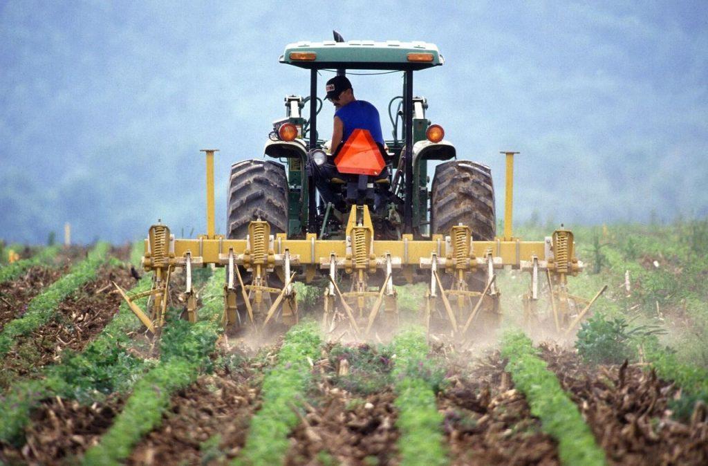 Bonus 1000 euro del Decreto Ristori 5 esteso anche ai lavoratori agricoli. Facciamo il punto