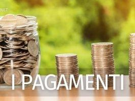 pagamento gennaio 2021 Reddito di cittadinanza, Naspi e Pdc