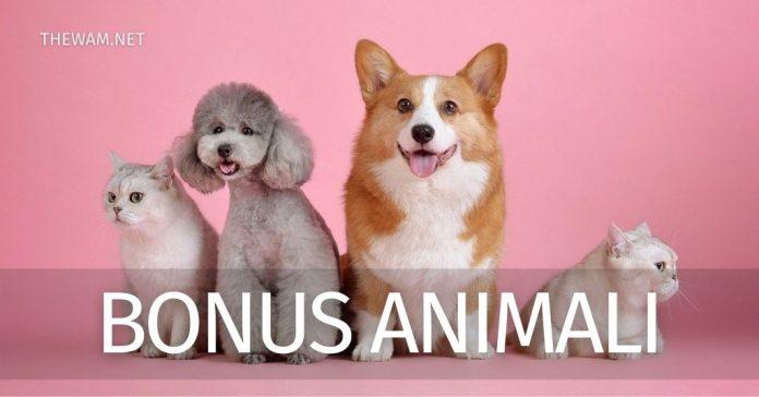 Bonus animali 2021. Guida per come richiederli