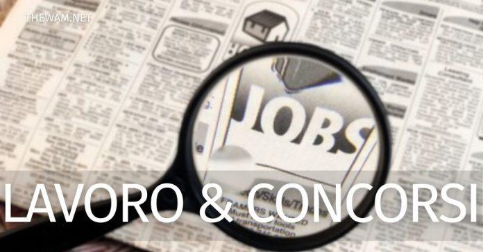 Offerte di lavoro e concorsi attivi al 7 febbraio 2021