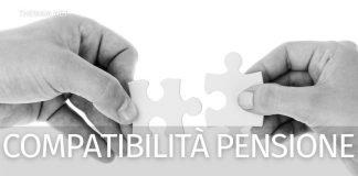 Pensione di invalidità: compatibile con gli altri Bonus? E con il Reddito di cittadinanza?