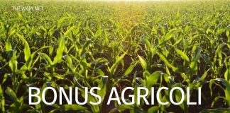 Bonus agricoli 1000 euro ultime notizie: lancio con il prossimo Decreto?