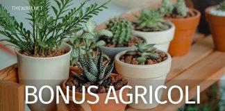 Bonus agricoli nel Ristori bis ultime notizie: nuovo Bonus stagionali in arrivo?