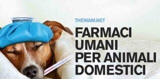 Farmaci per uso umano agli animali, firmato il Decreto