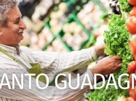 Quanto guadagna uno scaffalista di supermercato in Italia?