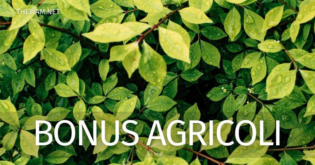 Bonus agricoli pagamento automatico? Le ultime notizie sull'incentivo