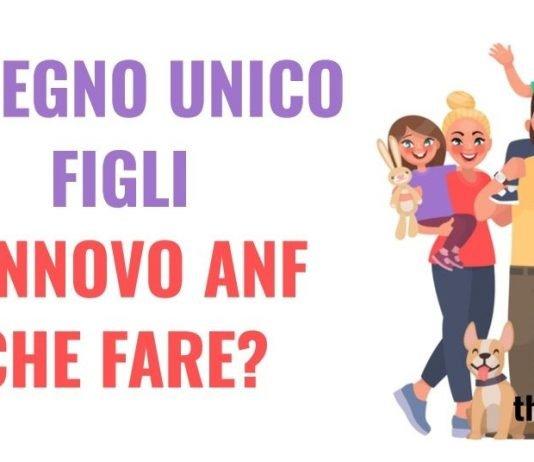 Assegno Unico Figli e bonus 100 euro: salta il rinnovo ANF?