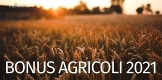 Bonus braccianti agricoli 2021: le ultime notizie sull'indennità Covid
