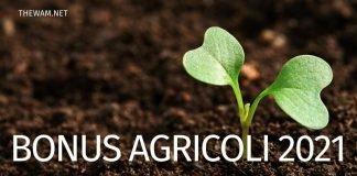Bonus lavoratori agricoli Inps: arriva il messaggio ufficiale