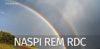 Proroga Naspi Rem e Rdc: doppio pagamento in arrivo?