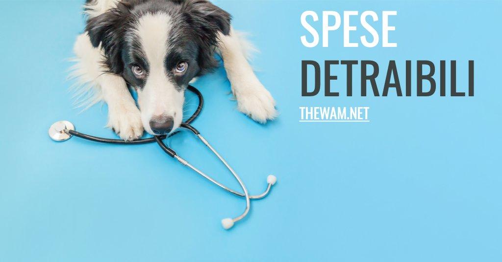 Farmaci veterinari detraibili come funziona e per quali spese