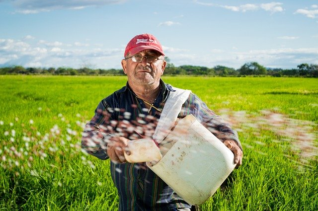 Bonus braccianti agricoli: novità sui pagamenti.