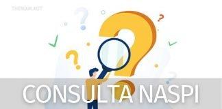 Naspi consultazione domande: come controllarla subito